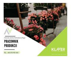 Pracownik sektora ogrodniczego: sadzenie, cięcie i pielęgnacja kwiatów